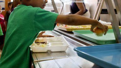 """Photo de """"Un repas complet et équilibré par jour aux enfants pauvres"""""""