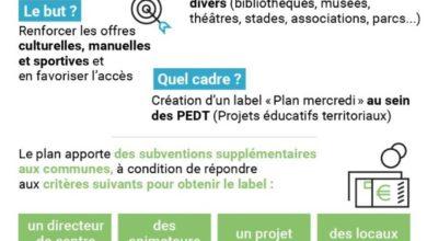 """Photo de Mise en place du """"Plan mercredi"""" pour les élèves des écoles maternelles et primaires (Question Au Gouvernement)"""