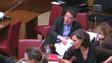 Photo de Audition de la ministre des Sports, Mme Roxana Maracineanu